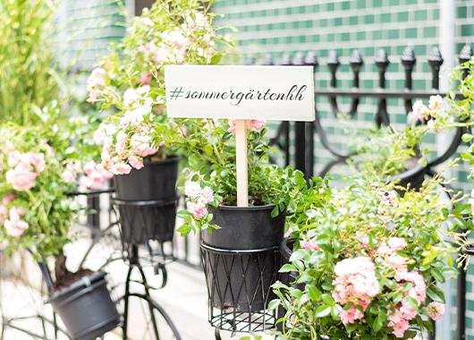 Deko Fahrraeder mit Blumen an Zaun
